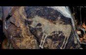 Тәуелсіздікке тарту (видео)