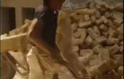 Бір аяғы жоқ болса да арбамен кірпіш тасып жүр (видео)