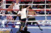 Рингте боксшыға жабылып кетті (видео)