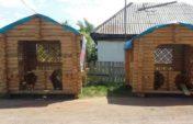 «Bastau Бизнес»: Жительница Буландынского района, завершив обучение, открывает свое дело