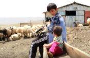 Қой бағып, кітап оқып… 120 сұрақтың 119-на дұрыс жауап берді (видео)