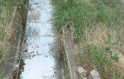 Таласқа түскен қара су
