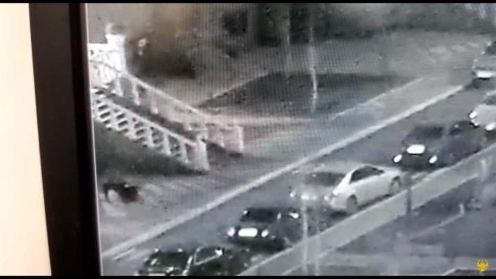 Нұр-Сұлтанда тонаушы қыздың телефонын тартып алмақшы болды (Видео)
